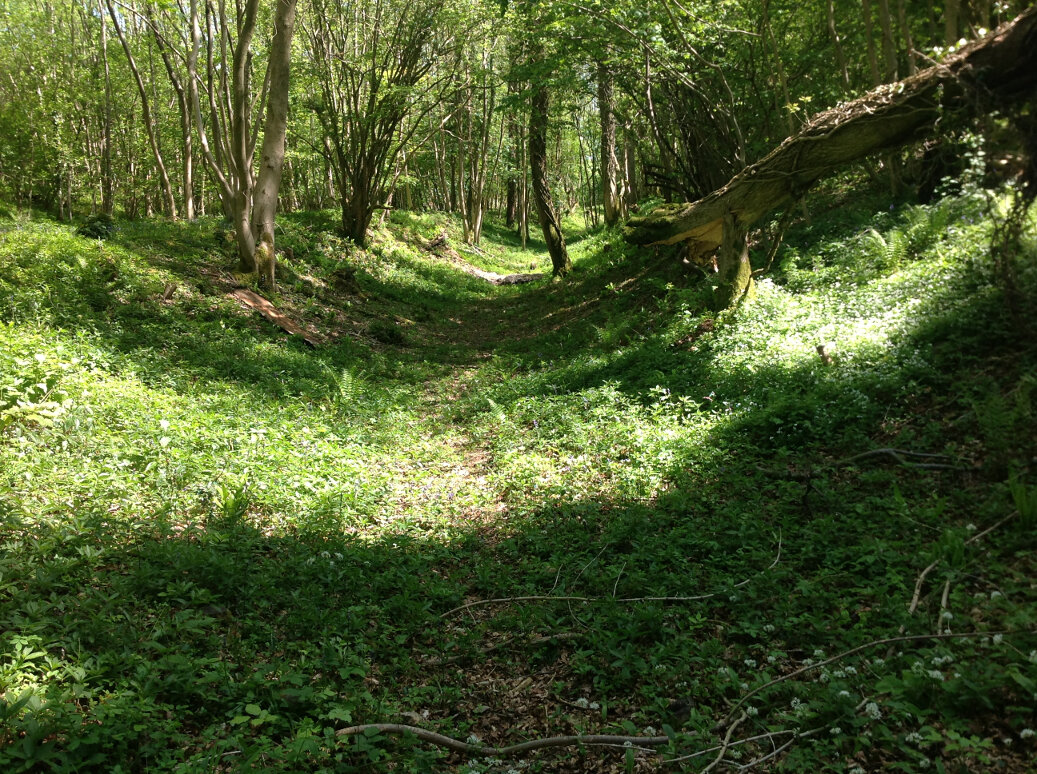 A Walk Around Wotton Under Edge (10)