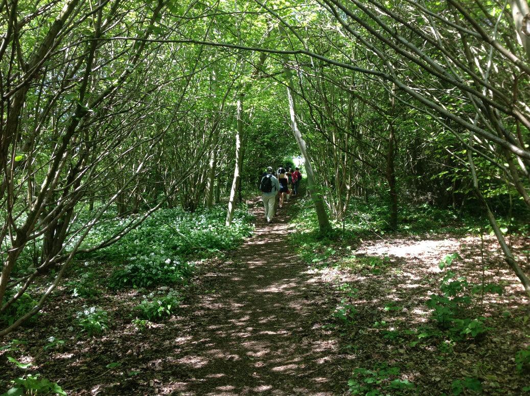 A Walk Around Wotton Under Edge (8)