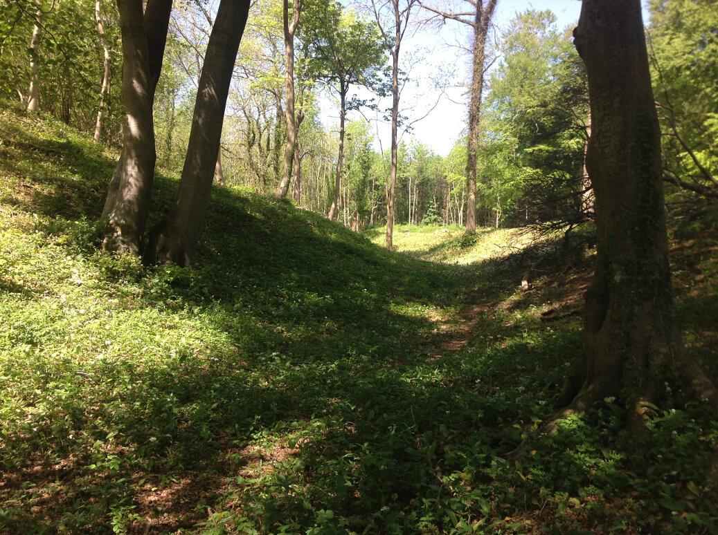A Walk Around Wotton Under Edge (9)