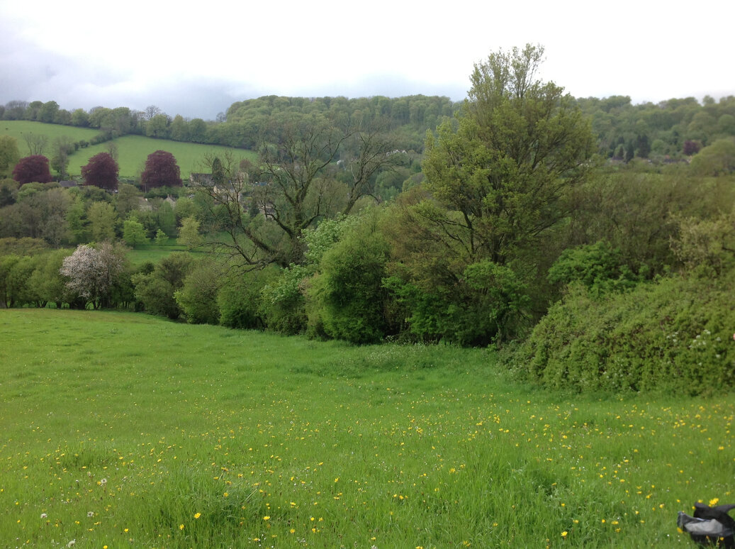Walking the Slad Brook (2)