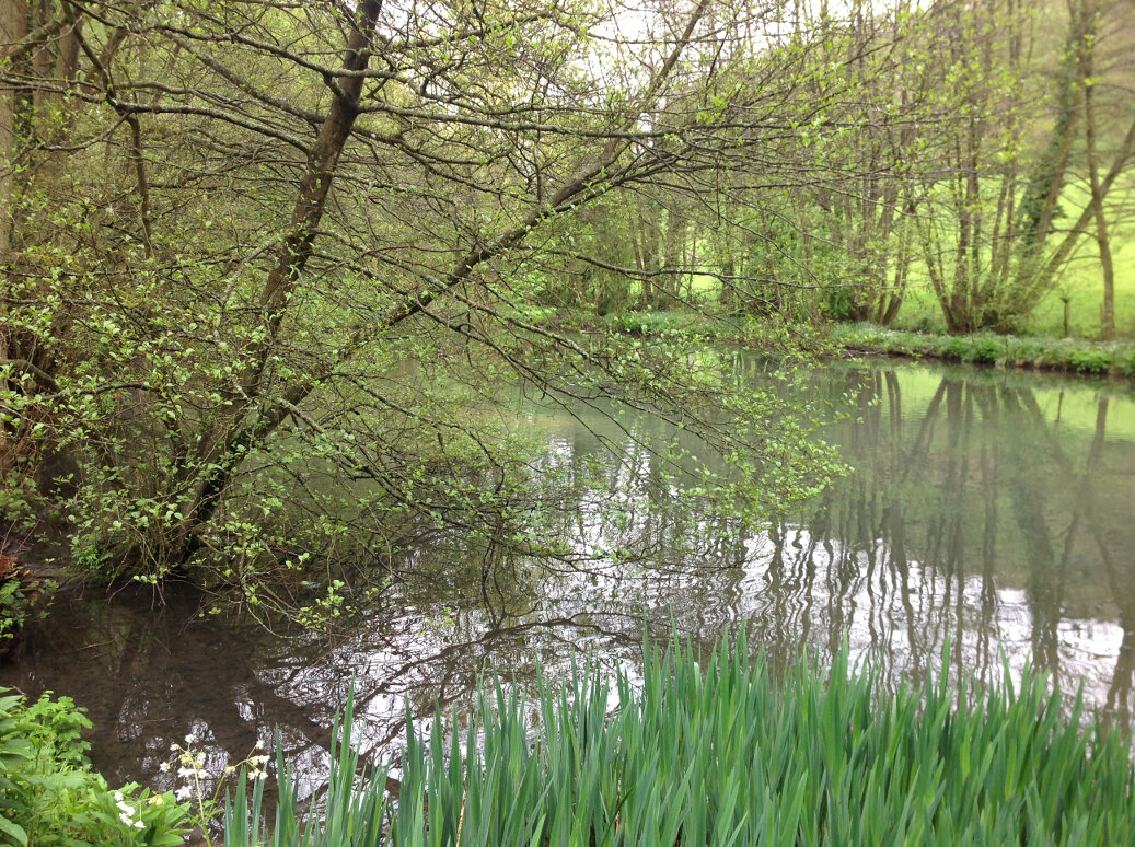 Walking the Slad Brook (20)