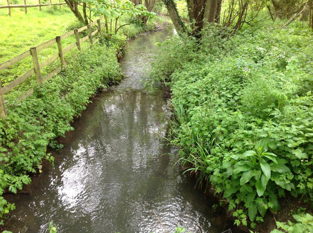 Walking the Slad Brook (23)