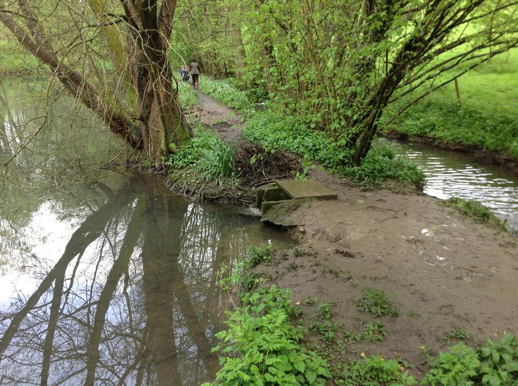 Walking the Slad Brook (24)
