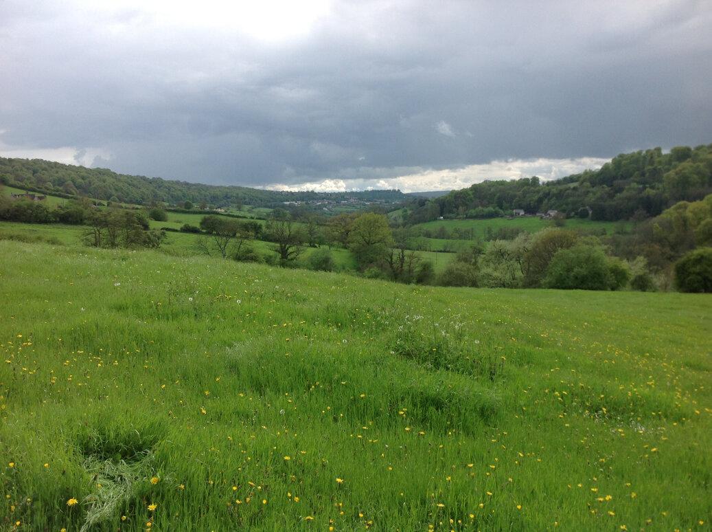 Walking the Slad Brook (3)