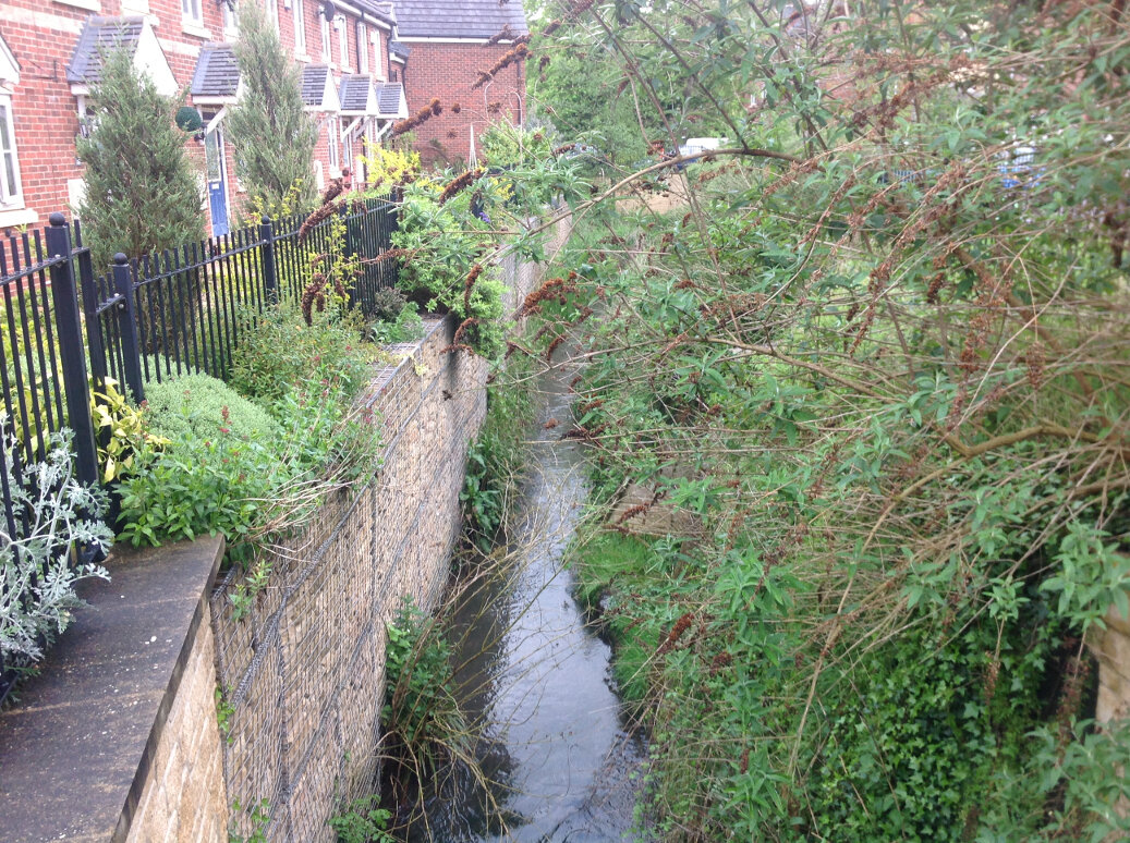 Walking the Slad Brook (7)