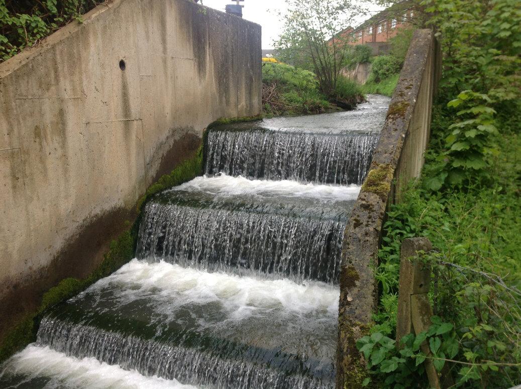 Walking the Slad Brook (8)
