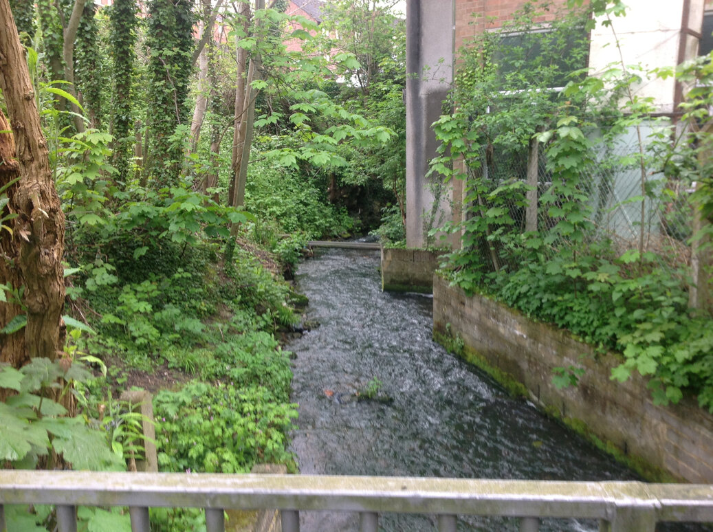 Walking the Slad Brook (9)