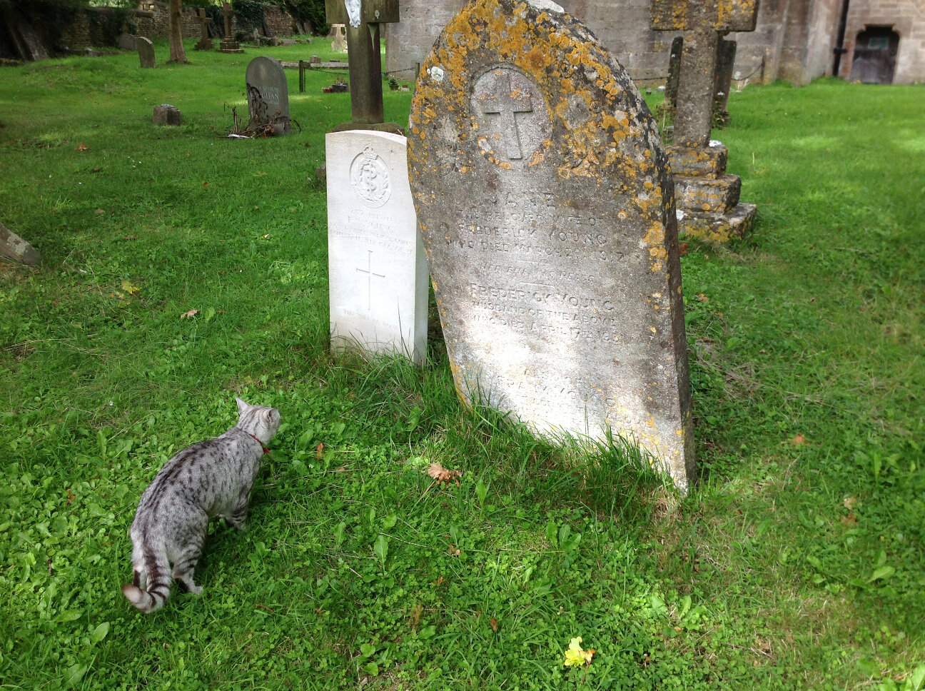 War Memorials of Chalford (3)