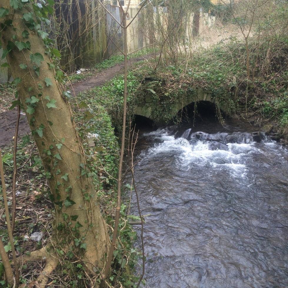 Springs and Stroud Mills (13)