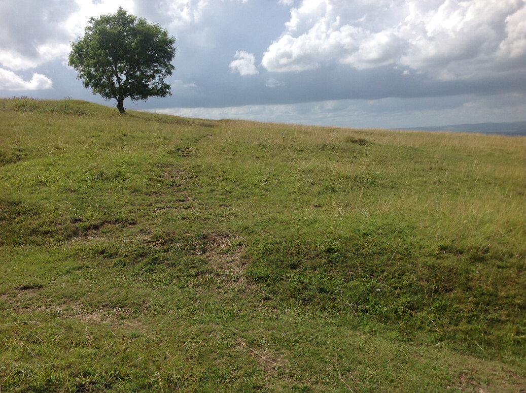 An ancient track up to Selsley Common