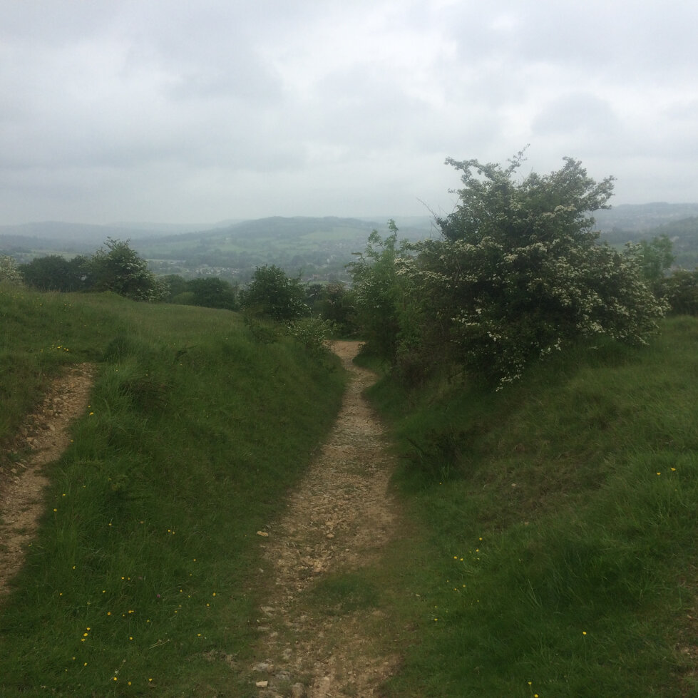 Places - Selsley Hill (3)