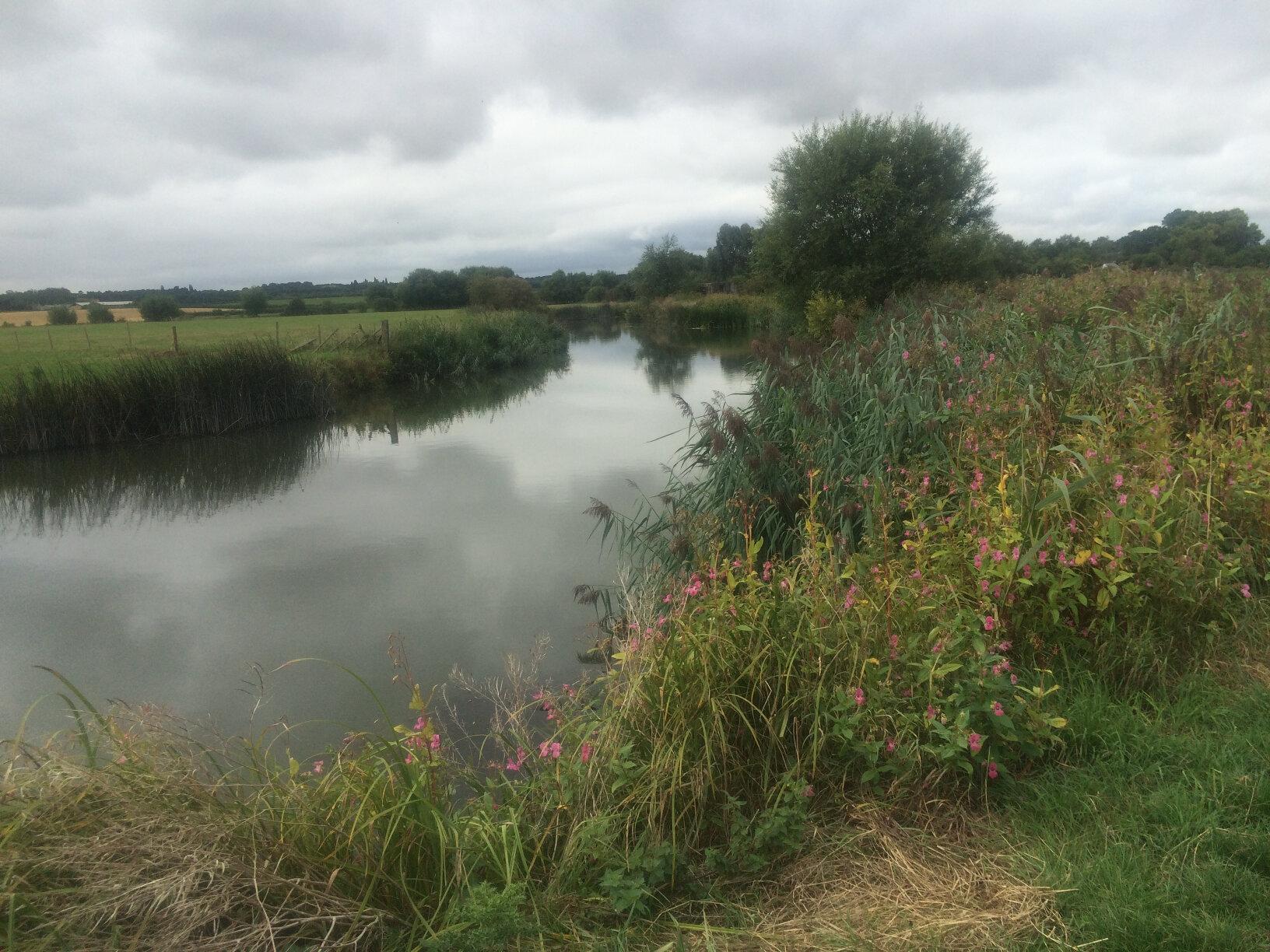 From Lechlade to Newbridge (21)
