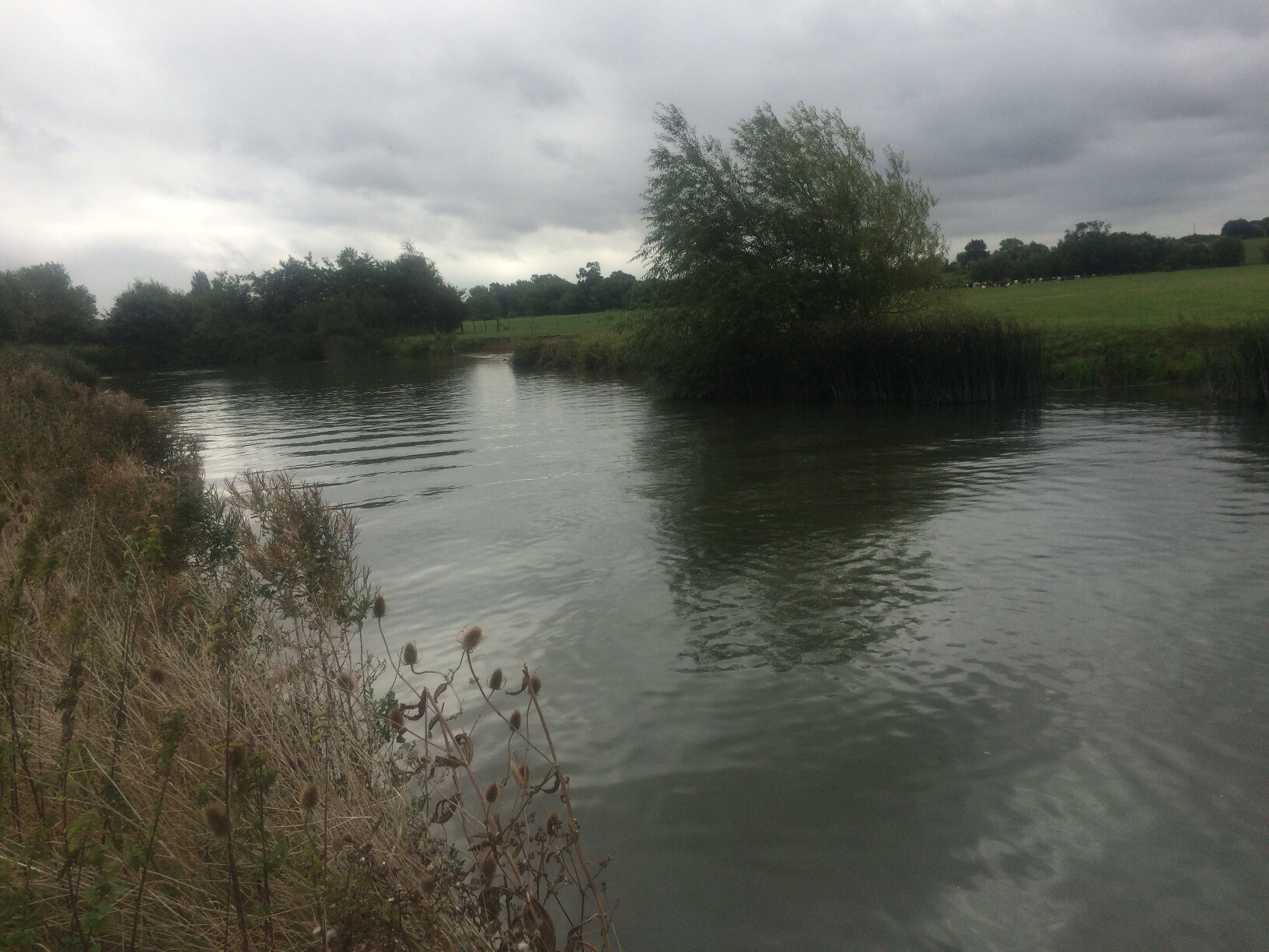 From Lechlade to Newbridge (23)