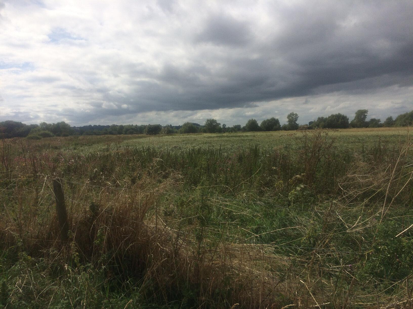 From Lechlade to Newbridge (53)