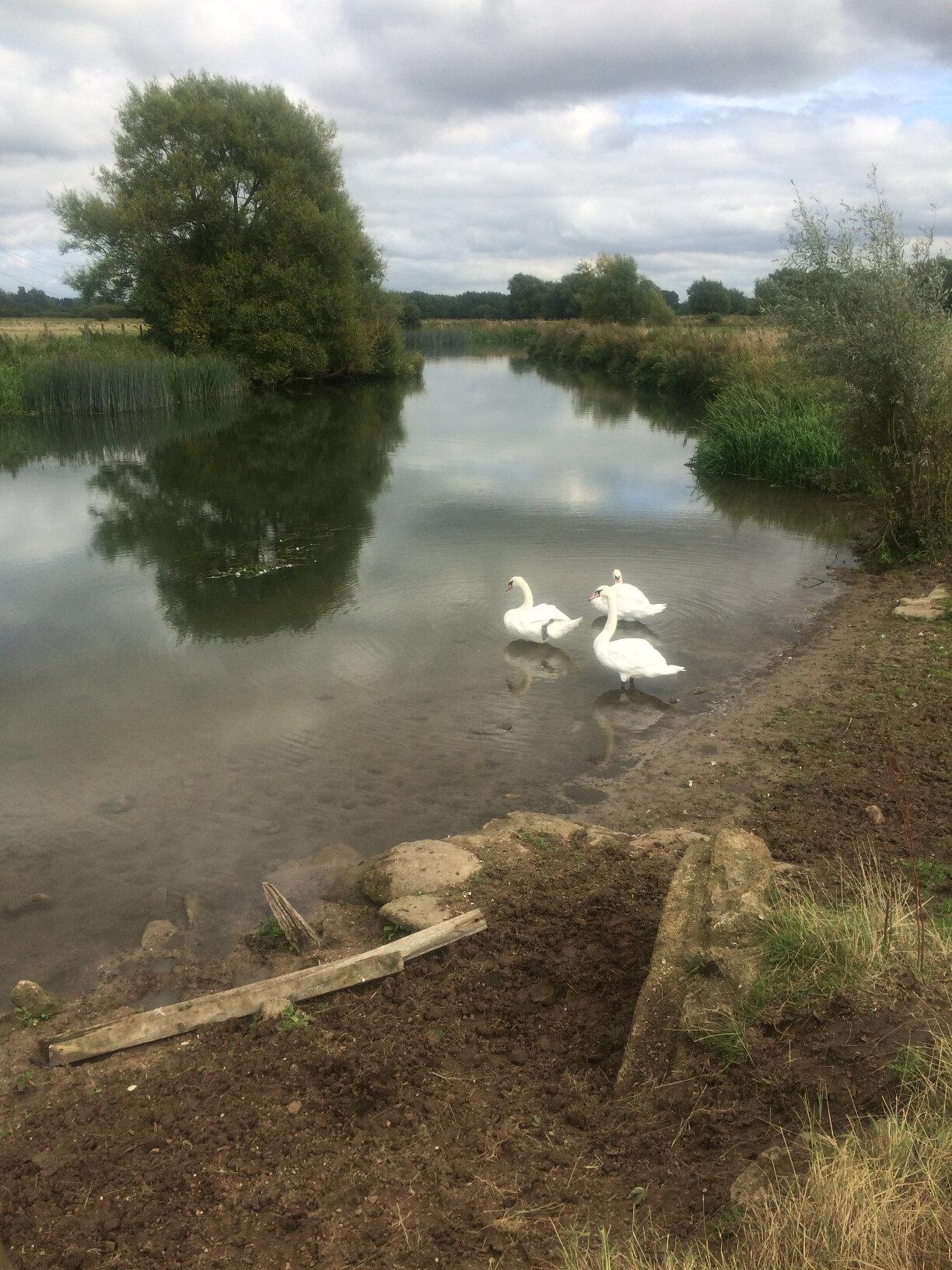 From Lechlade to Newbridge (58)