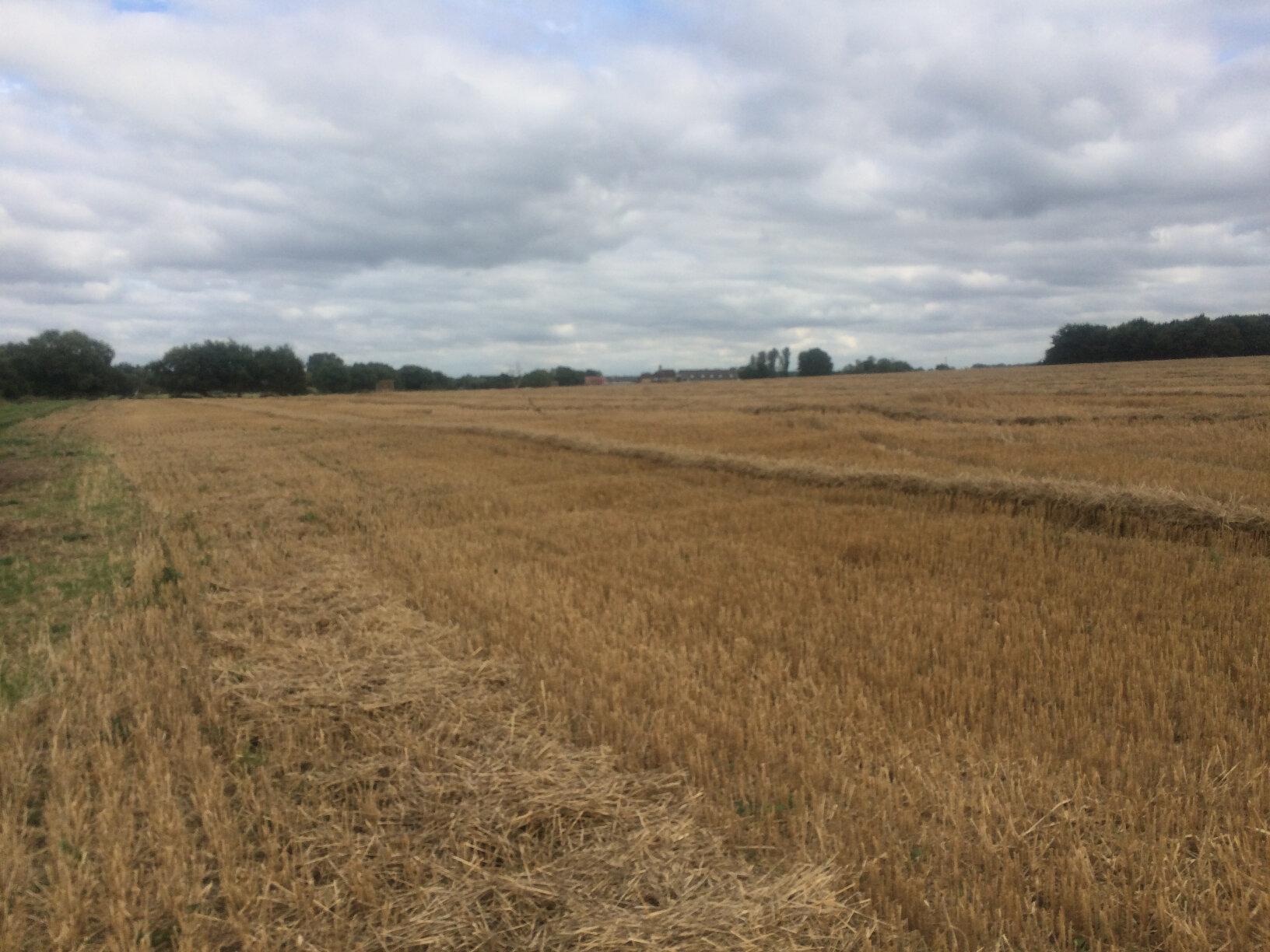 From Lechlade to Newbridge (59)