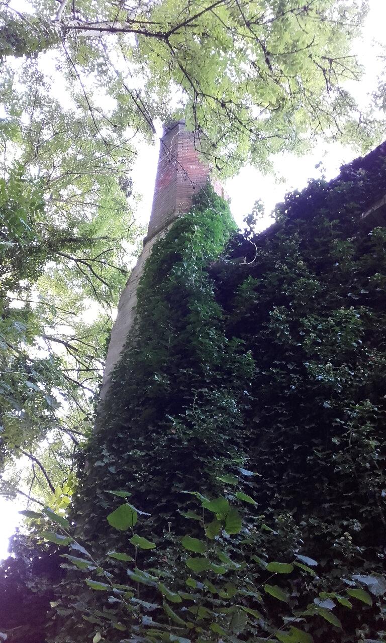 Hidden Stroud Walks (1)