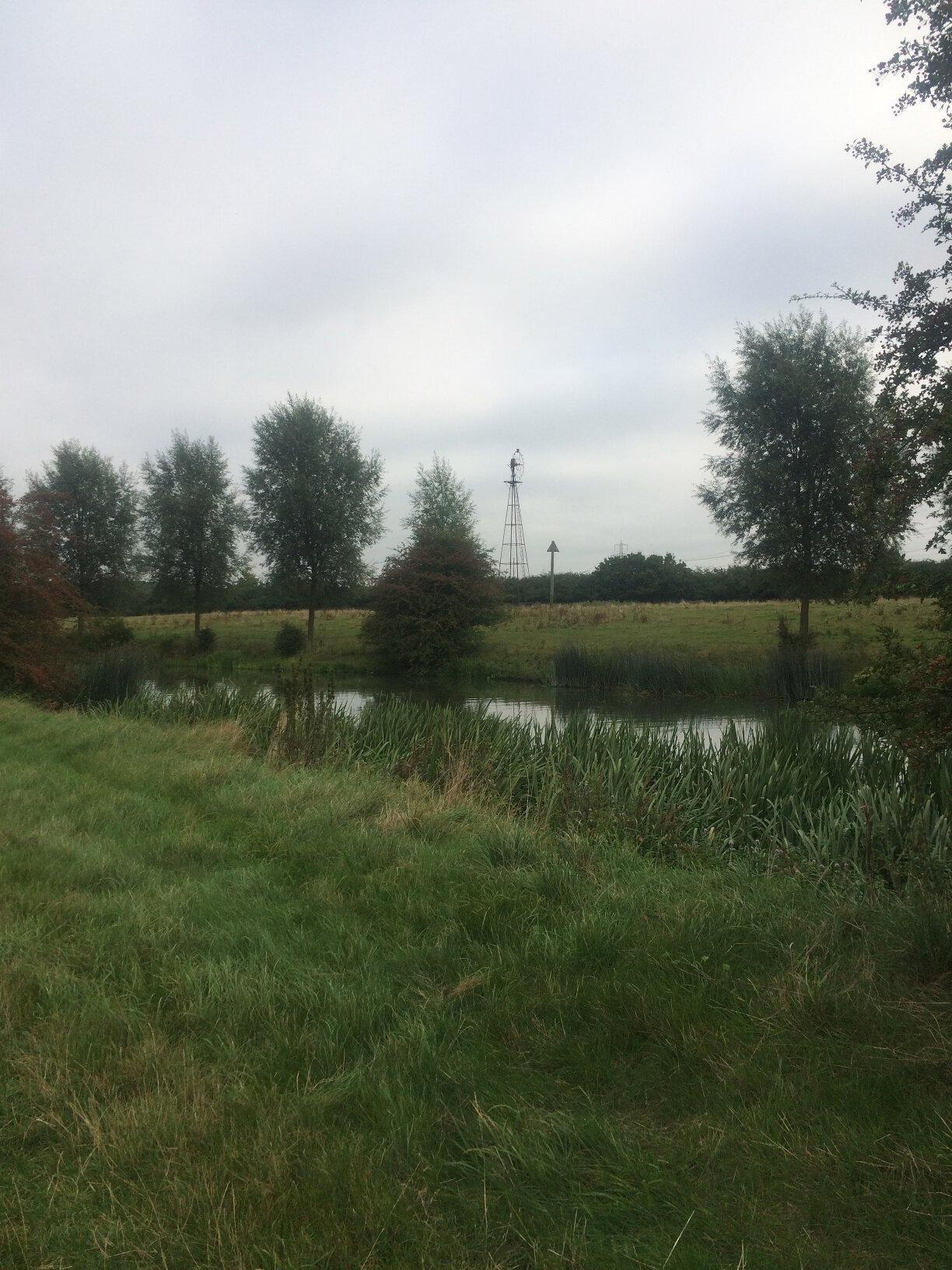 Newbridge to Oxford (7)