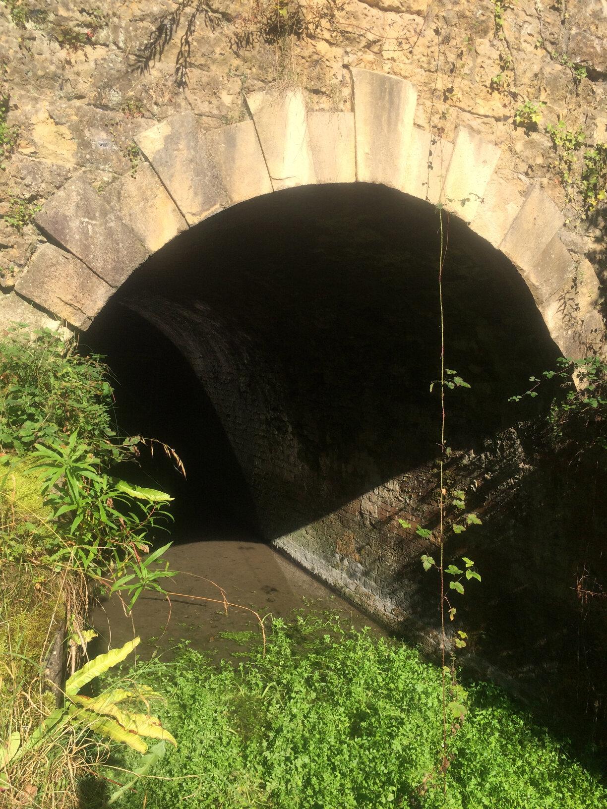 Sapperton Tunnel (18)