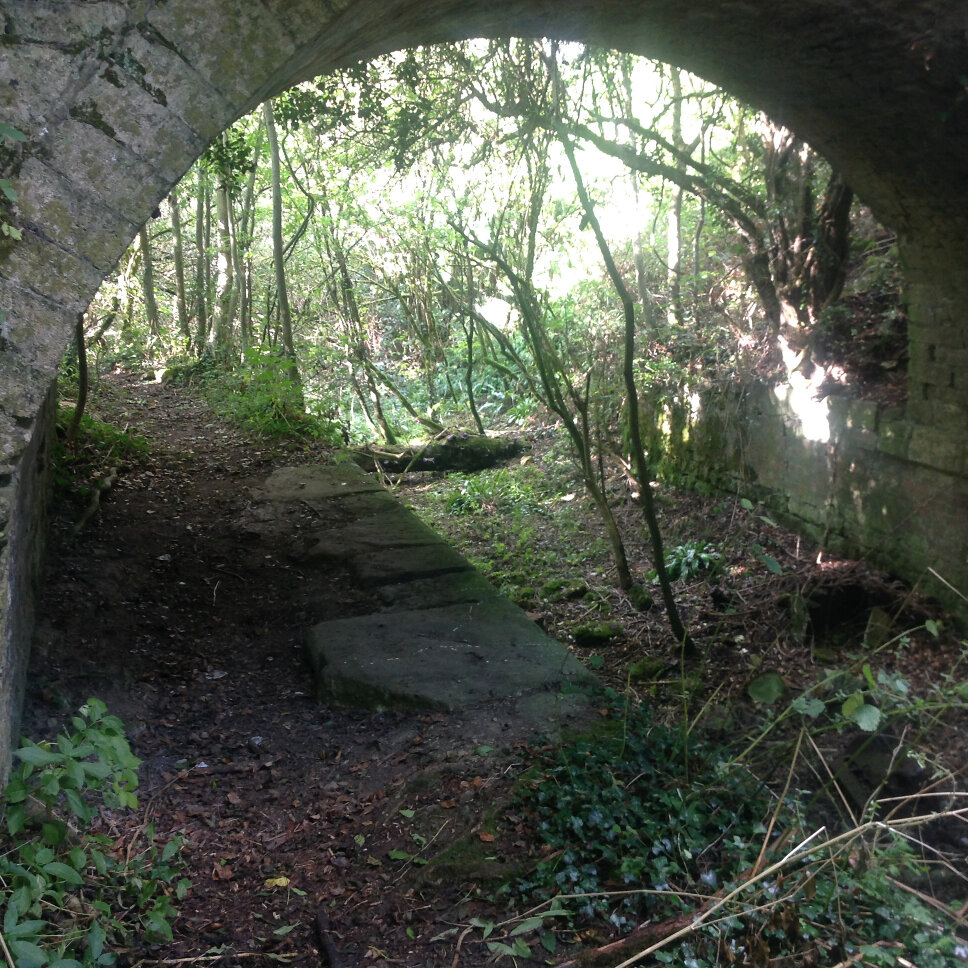 Sapperton Tunnel (32)