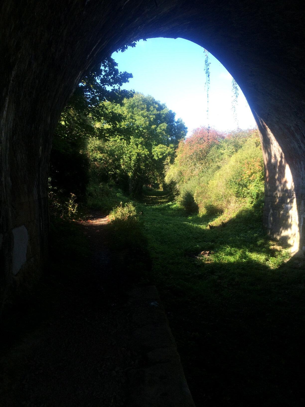 Sapperton Tunnel (7)