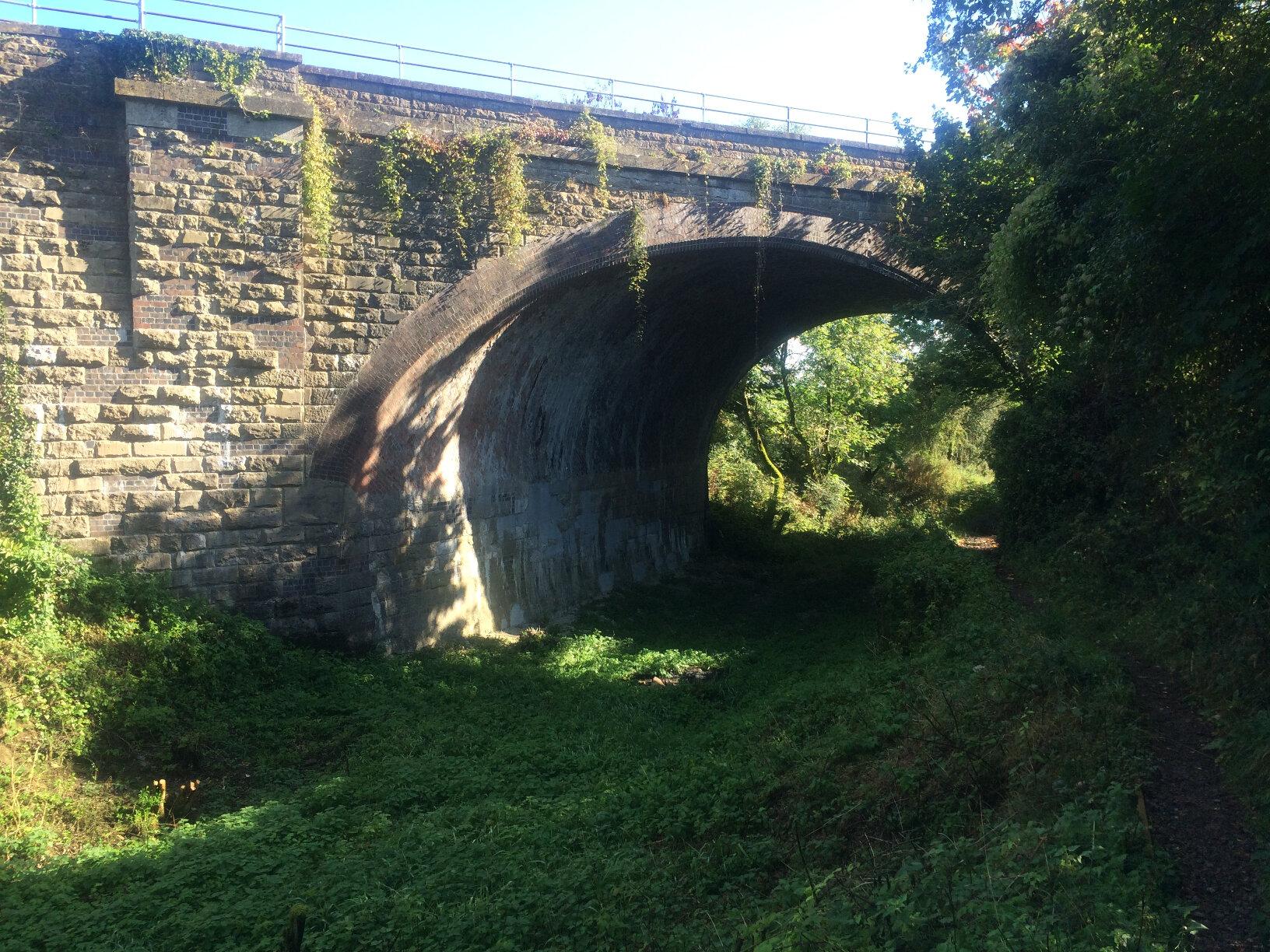 Sapperton Tunnel (8)