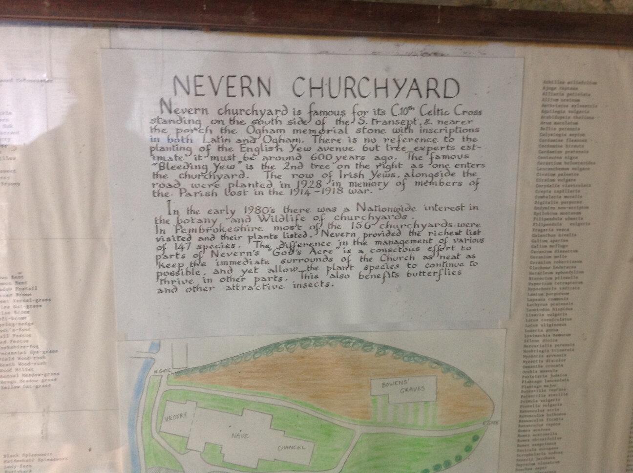 Nevern, near Newport, Pembs (15)